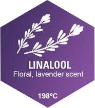 Linalool Graphic
