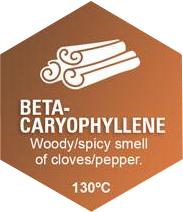 Beta-Caryophyllene Graphic